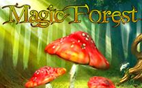 magic-forest