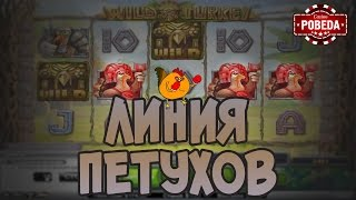 Wild Turkey Big Win. Игровые автоматы NetEnt. Казино Pobeda | Lowbro Casino